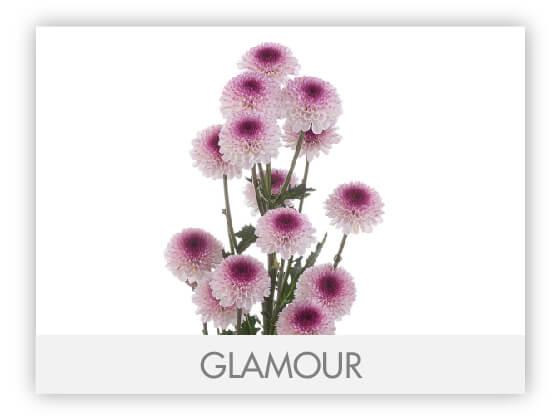 GLAMOUR10