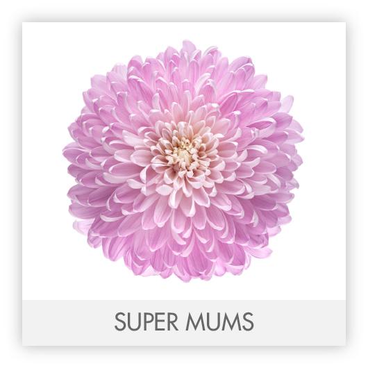 SUPER MUMS-100