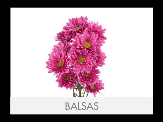 BALSAS (1)