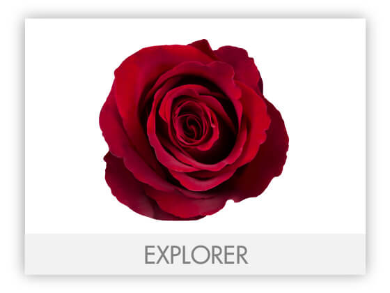 EXPLORER100